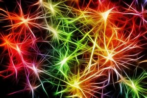 rehatkan sistem saraf